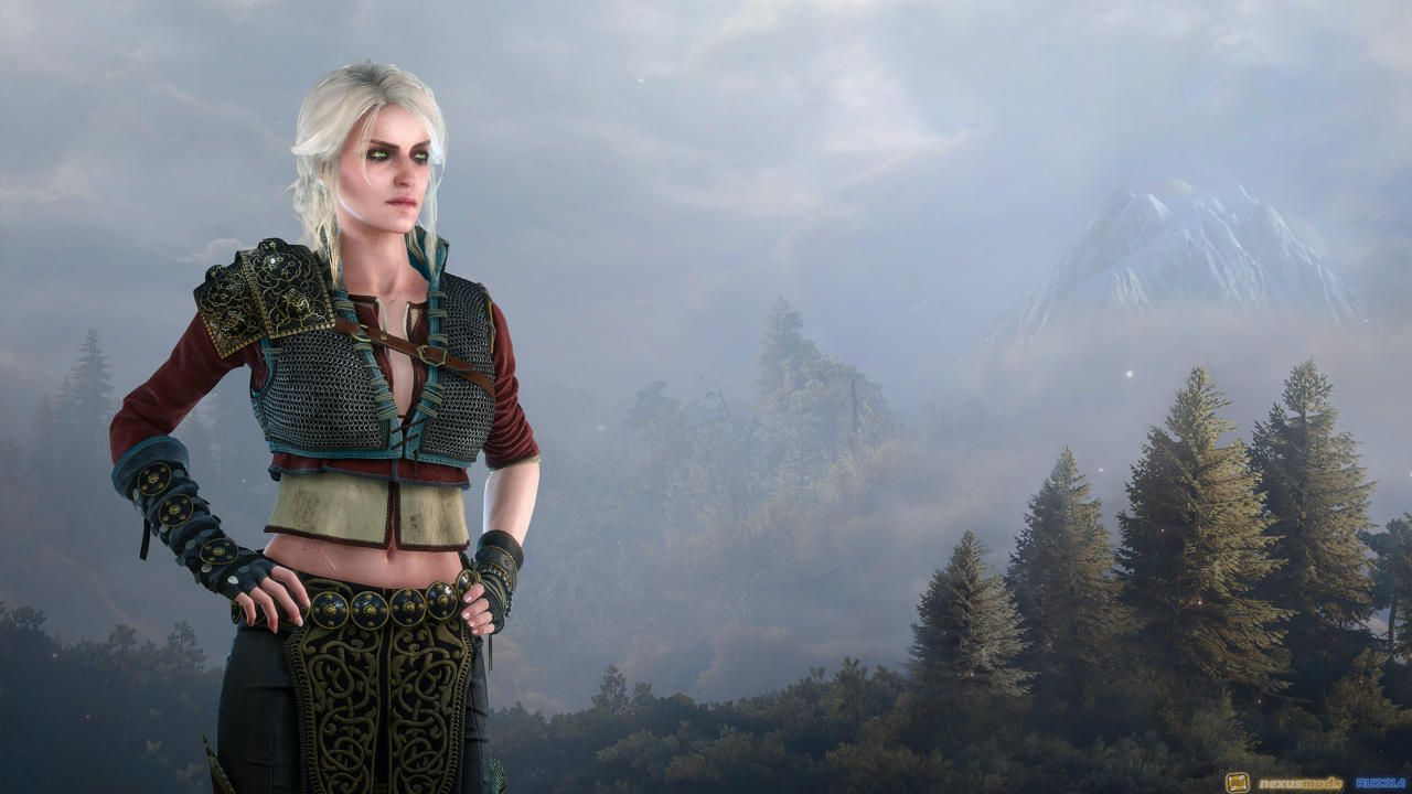 DLC 14 - The Witcher 3 Wild Hunt - Alternative Look for Ciri