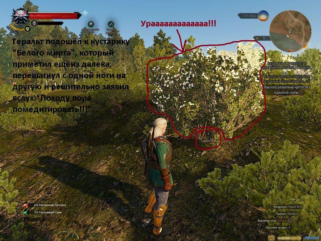 Где найти семена спорыньи в ведьмаке